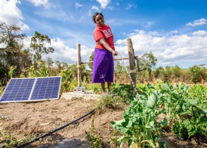 (Em)powering Farmers in Africa: Small-scale Solar Lights a Path for Agricultural and Economic Impact